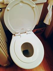 double toilet